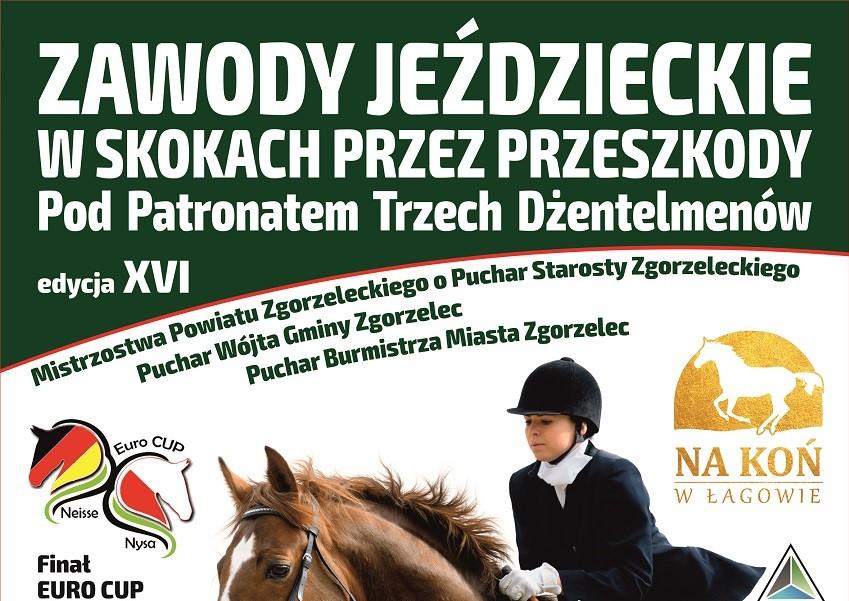 Zawody jeździeckie w skokach przez przeszkody w Łagowie