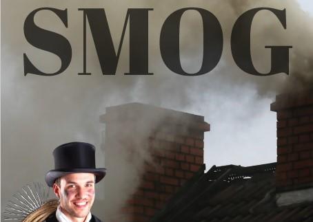 """Zdjęcie dla wpisu -""""Czyste kominy to mniejszy smog"""""""