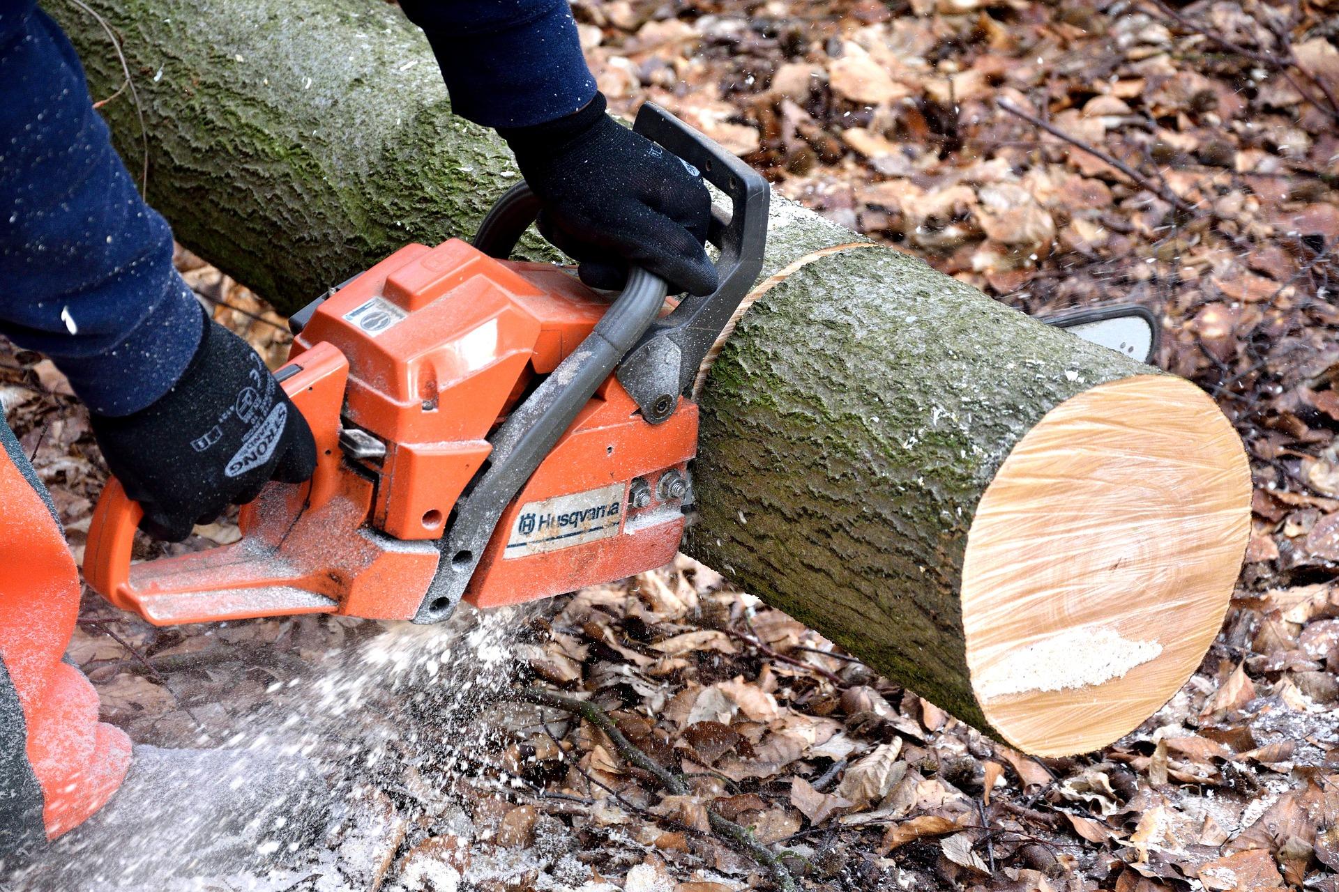 KRUS: Bezpieczne pozyskiwanie i przetwarzanie drewna