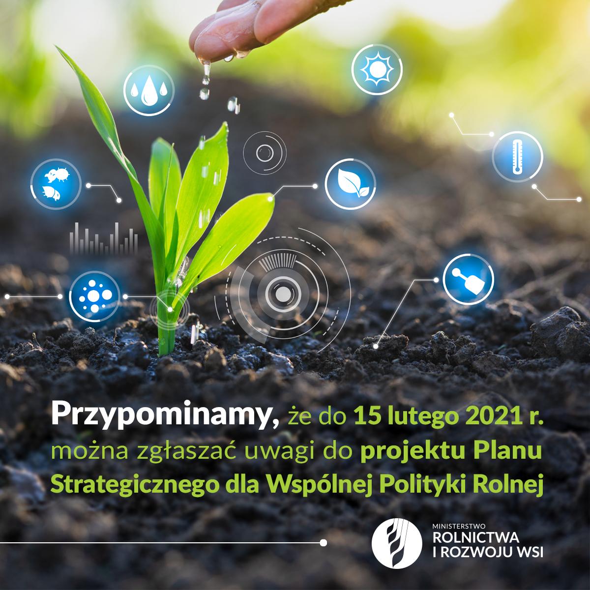 MRiRW: Konsultacje społeczne Planu Strategicznego nowej WPR do 15 lutego