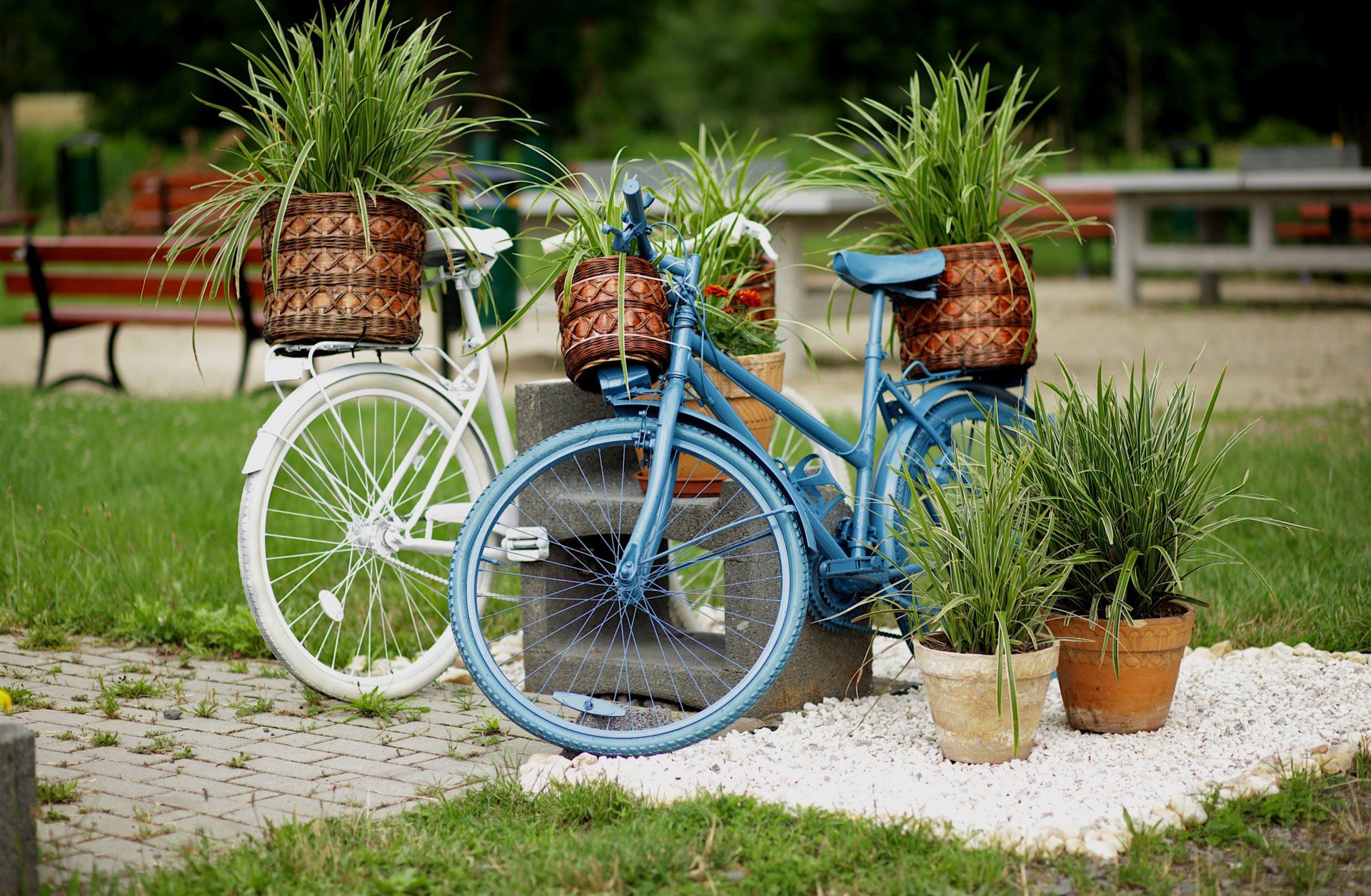 Żarska Wieś z nowymi kwiatowymi instalacjami